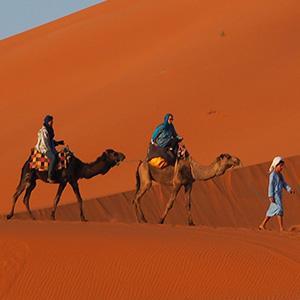 Morocco Desert tours, Morocco Camel tours, Camel trek in Merzouga, Tours in Morocco, trips to Morocco, Camel tours in Merzouga, Camel trekking in Morocco, Marrakech Day trips, trip to Morocco and Dese