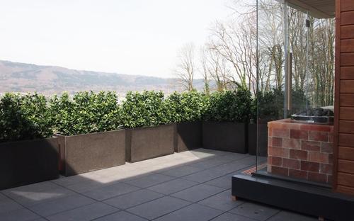 Terrassengestaltung Ilex