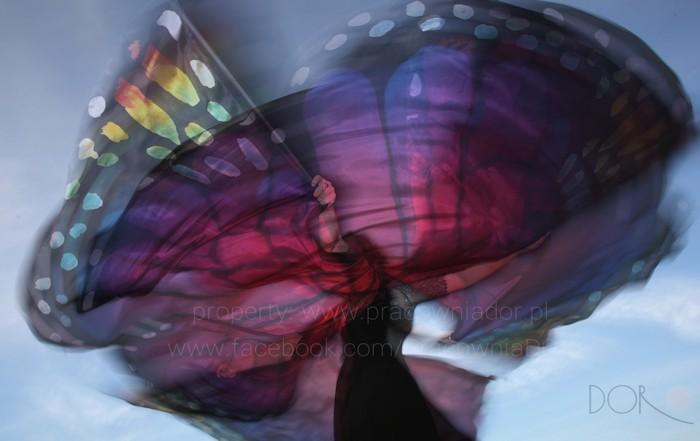 Dance swirling wings