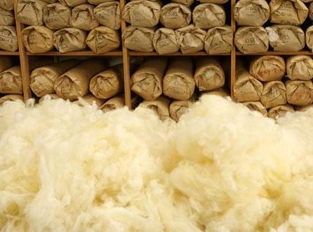 laine lavable