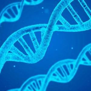 DNA Tracking in Leather