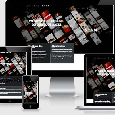 responsive web design divi theme wordpress expert developper, content management, webmaster, hosting, internet domains