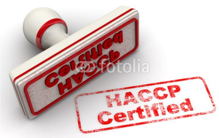 FORMAZIONE HACCP