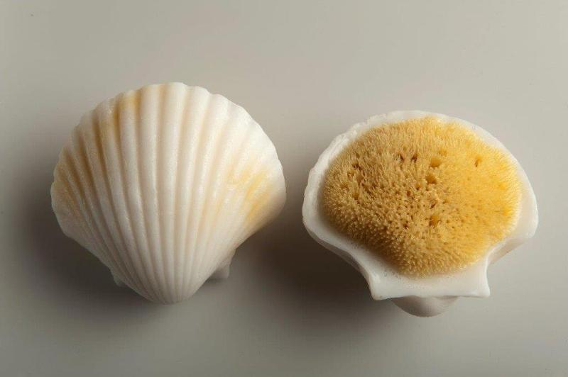 Adriatic seasponge melted together with natural soap.