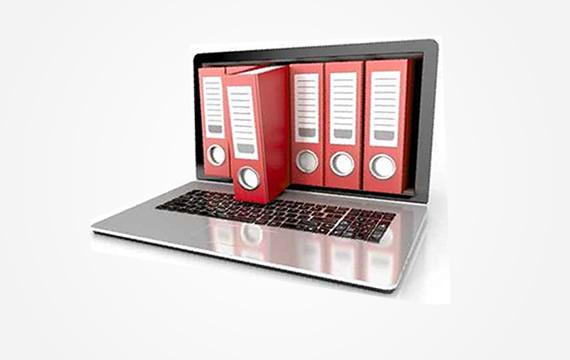 Document Management Solution is developed on the SharePoint technology and is providing a way of organizing the documents and automate of the information flow and documents.
