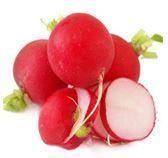 ravanello di colore rosso nero e bianco il più noto è rosso tondo o allungato ha la polpa bianca croccante e succosa anche le sue foglie se fresche si possono cucinare alla stesso modo degli spinaci