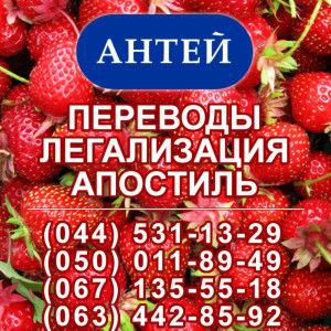 International Bureau Antei: translations, legalization, apostille