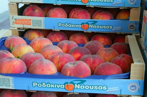 Packaged peaches for export