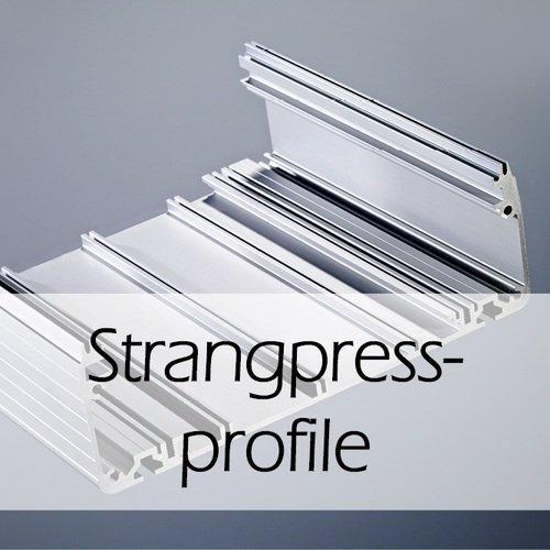Strangpressprofile