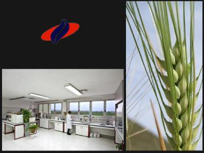 Agricultura: importación-exportación