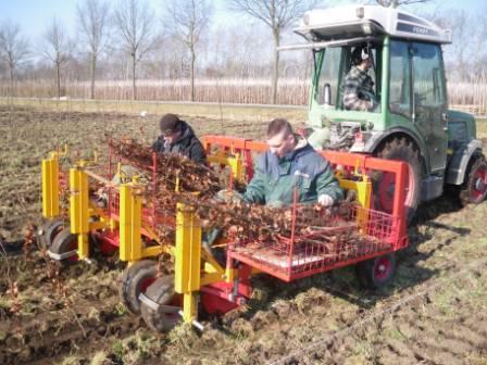 Tree planting machine for all sizes of trees. Especially for tree nurseries.