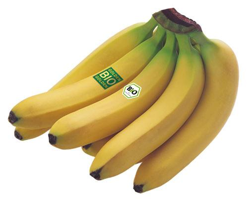 Bananas from Peru, Ecuador, the Dominican Republic and Colombia. According to customer wishes in conventional, organic or (organic) Fairtrade quality.