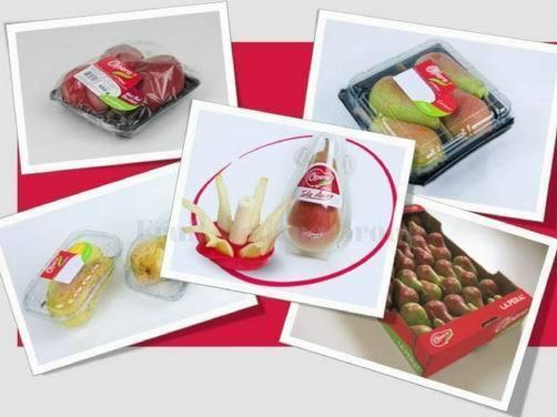 Different Packaging Solutions