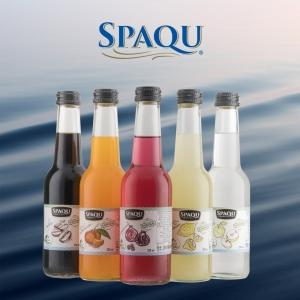 SPAQU Sparkling Fruit Flavored Mineral Water