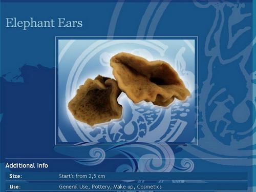 ELEPHANT EARS NATURAL SPONGES