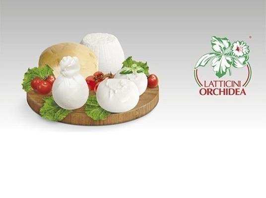 Latticini Orchidea produzione ed esportazione di mozzarelle, provola, scamorza, ricotta di prima qualità.