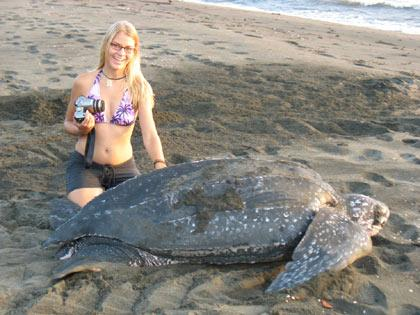 A close encounter with a Leatherback turtle in Costa Rica