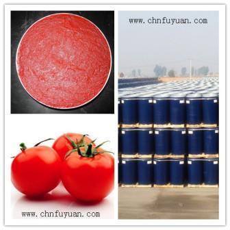 Fuyuan Tomato Paste
