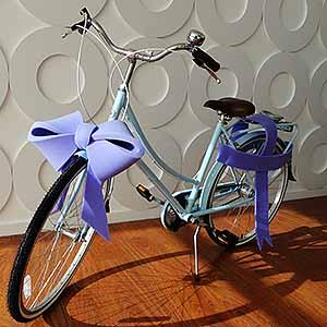 Blue Big Bow in M size (Bicycle)