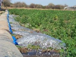 Irrigation for all crops
