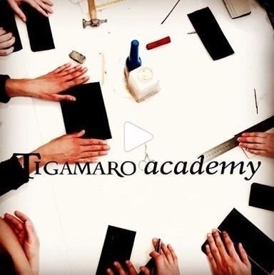 tigamaro academy