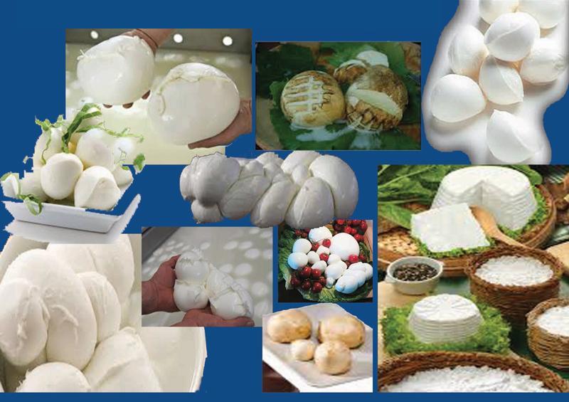 D-QUADRO SRL distribuzione prodotti caseari