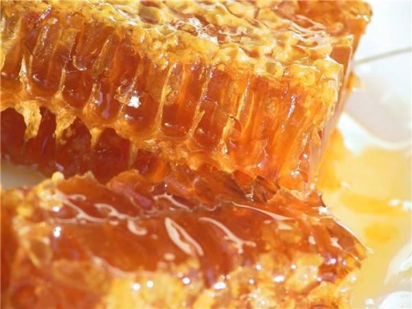 Крупное предприятие по сбору мёда, ищет покупателей в России, США, Греции, Турции, Саудовской Аравии, Катаре, Объединённых Арабских Эмиратах, Катаре, Египте, Израиле, paritetabba@gmail.com