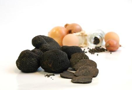 Une gamme large et complète de truffes, en boîtes ou en bocal, entières ou en morceaux qui permet d'apprécier toute l'année les saveurs inimitables de la truffe.