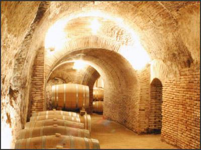 Vinos de España