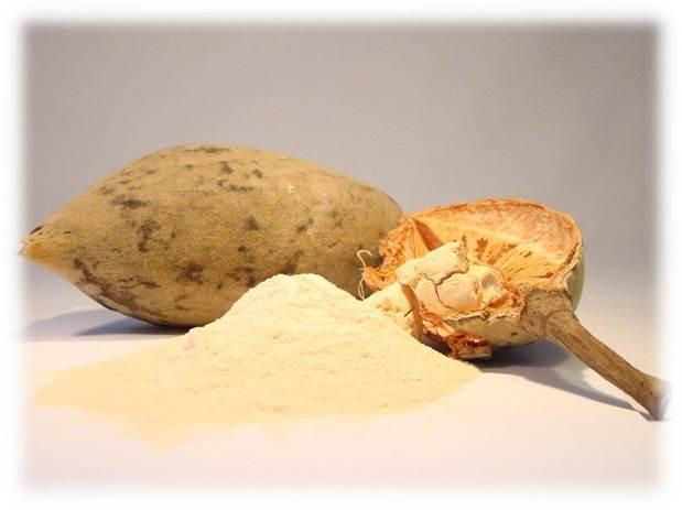 Freeze dried Cupuazu