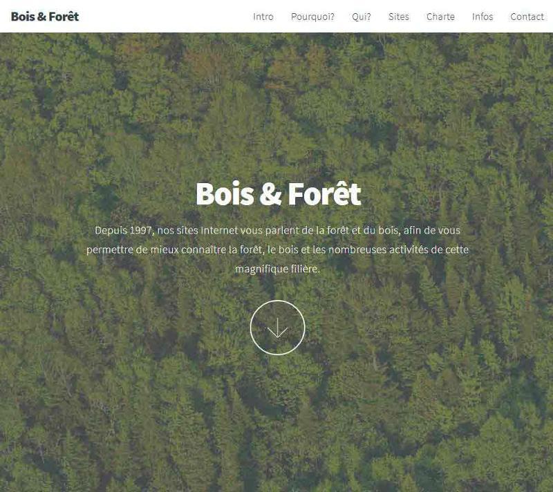 Depuis 1997, nos sites Internet vous parlent de la forêt et du bois, afin de vous permettre de mieux connaître la forêt, le bois et les nombreuses activités de cette magnifique filière.
