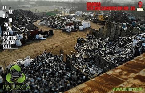 Scrap Yard Pajurca