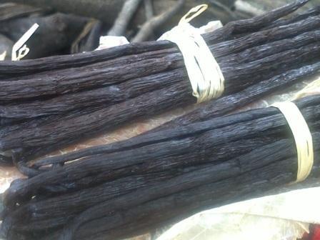 СТРУЧКИ ВАНИЛИ Длина стручков:14-15 см Влажность макс.: 28% Содержание ванилина: 2% Вкус и аромат: типичные для ванили