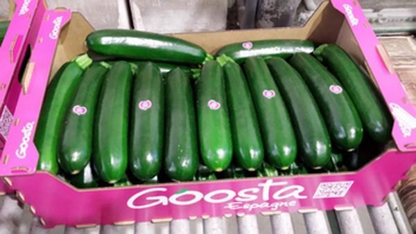 Zucchinis Goosta
