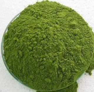 offering quality assured range of Moringa Leaf Powder that are used for the skin care. Offered catalog contains fatty acids and generates positive energy after the gentle apply.