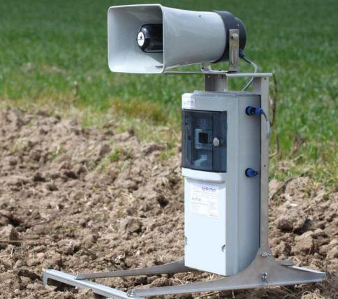 Effaroucheur sonore AviTrac 9M en plein champs, protégeant semis de tournesol