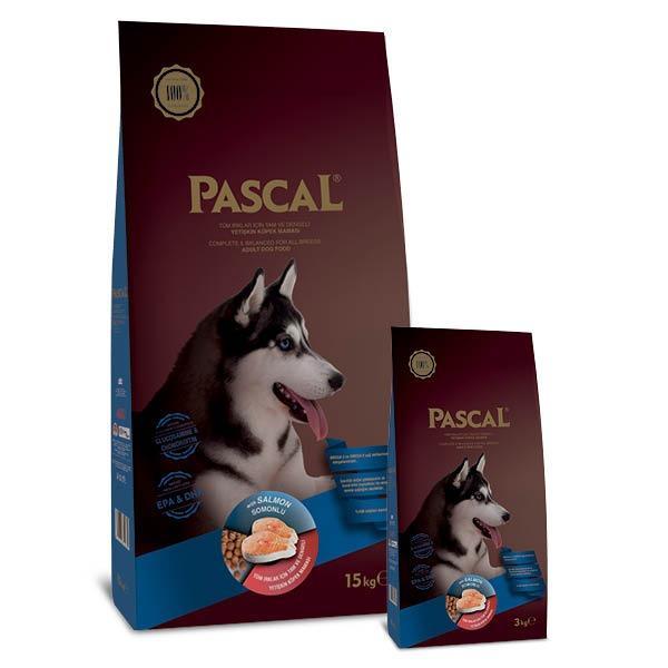 PASCAL DOG ADULT SALMON