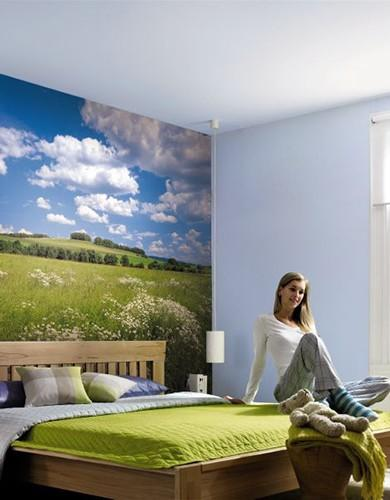 Wallcoverings and Photomurals