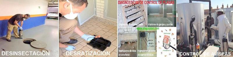 Control de plagas para edificios, comunidades de propietarios y particulares