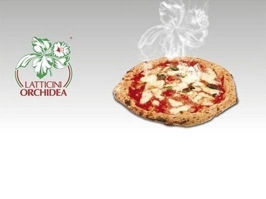 Latticini per la ristorazione freschi e surgelati: mozzarella, provola, fior di latte, filone frozen, ricotta.