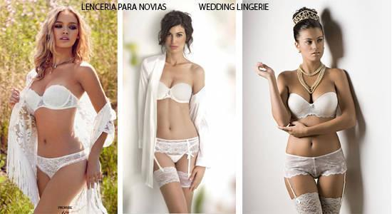 Distribuimos lencería para novias de las mejores marcas del mercado.