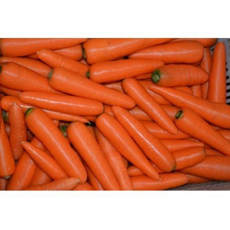 Commerce international de légumes - Import export de légumes