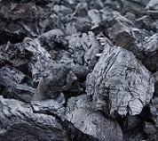 Aspecto Carbón Vegetal