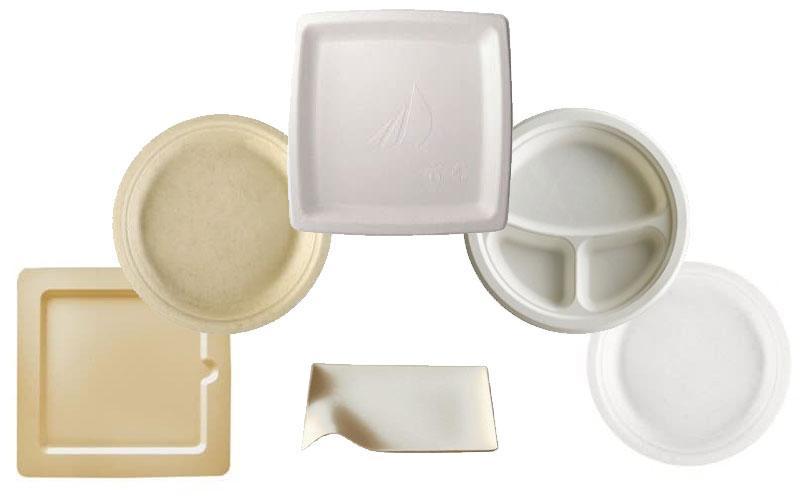 Assiette biodégradable