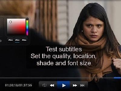 Subtitling and adaptation