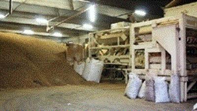 Agri Cereal Mandorle MANDORLE PELATE