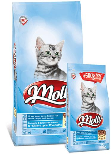 MOLLY KITTEN CAT FOOD