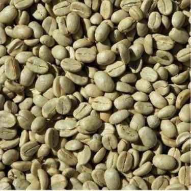 Robusta green coffee beans -Import Export