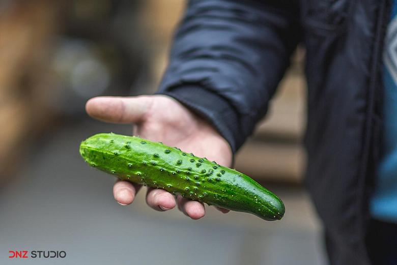 Cucumbers Atlet