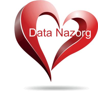 Logo Data Nazorg